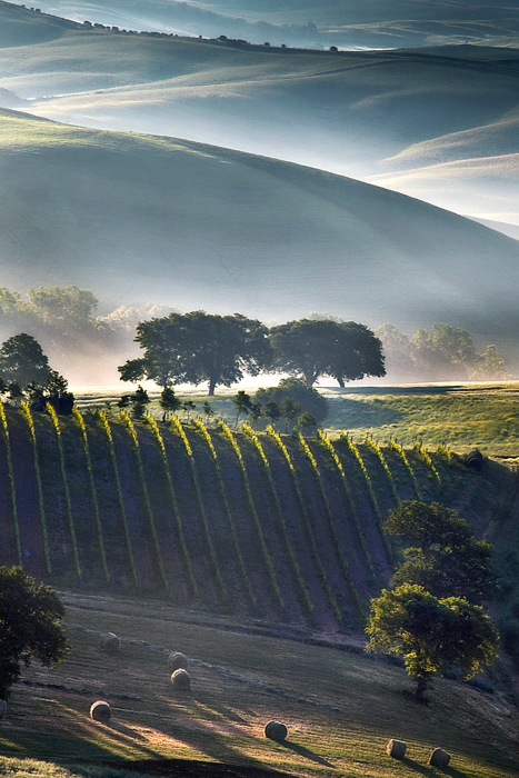 Winner - Landscape Photographer of the Year - 2011
