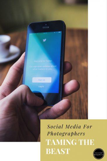 Social Media: Taming The Beast