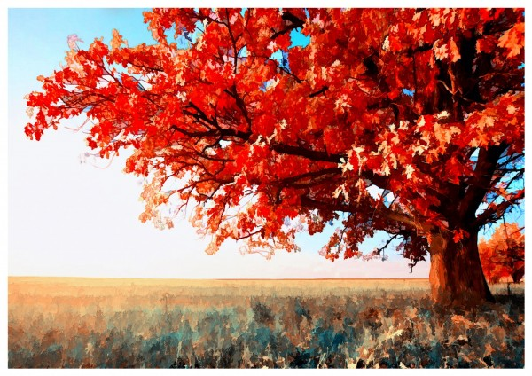 The_Red_Tree