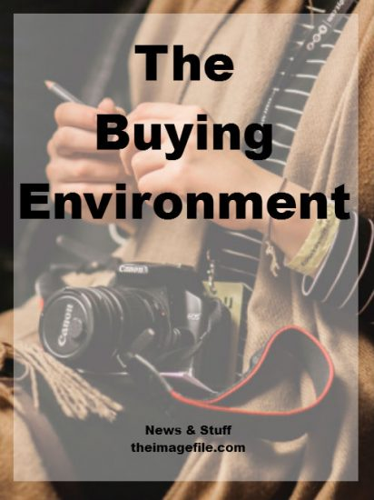 The Buying Environment