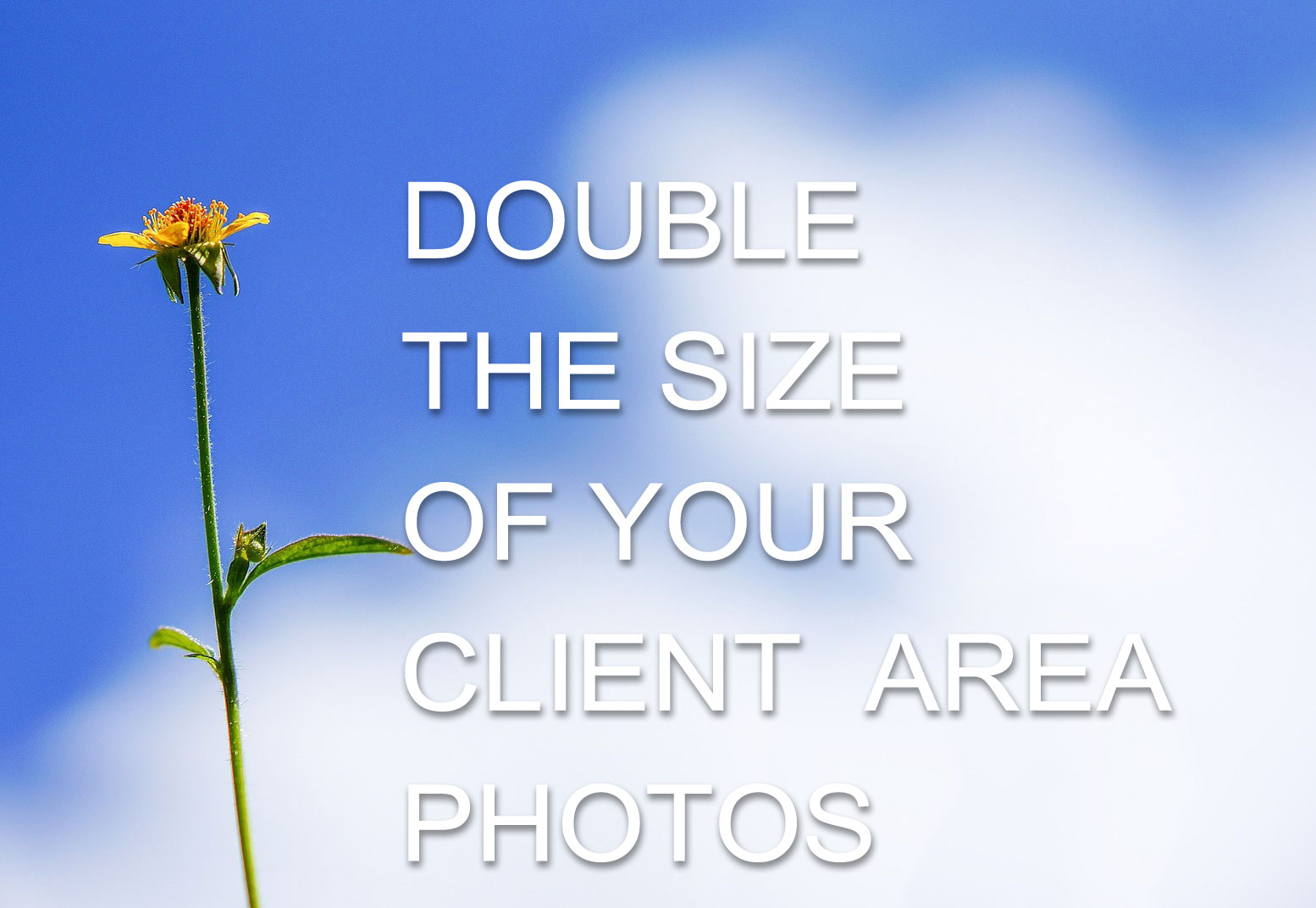 Double the size of your client area photos