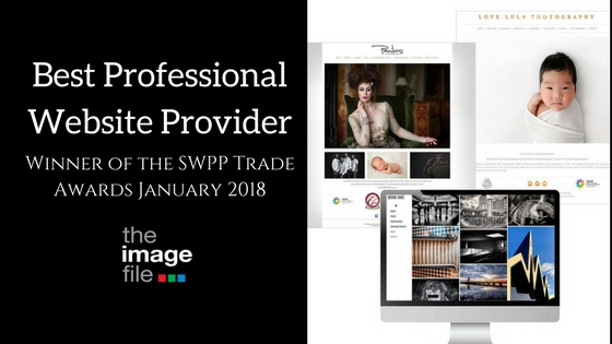 Winners of Best Professional Website Provider 2017!