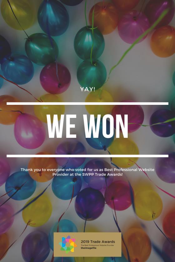 Best Professional Website Provider 2019| We Won!