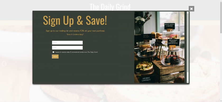 Pop-up box example of mailing list sign-up and discount offer.